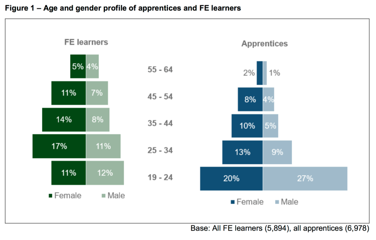 Profile Of Further Education Fe Learners And Apprentices In Uk 2018 Half Of Apprentices Are 19 24 Years Old And Fe Learners Often Have Complex Lives Job Market Monitor